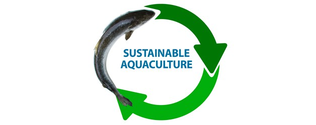 Up to USD125bn in new revenues from sustainable aquaculture by 2030, BSDC says